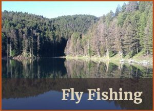 Ranch Rental Fly Fishing